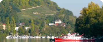 Hornfelsen_Grenzach_mit_Feuerloeschboot