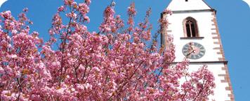 Kirche Grenzach im Frühling