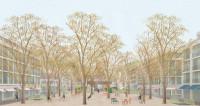 Stadthain mit Bäumen