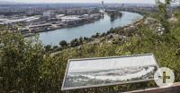 Blick vom Aussichtspunkt Hornfelsen nach Basel über Reben